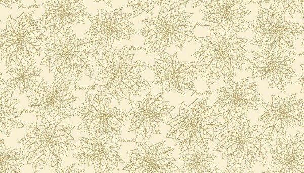 2096_Q_Poinsettia-outline-600x342