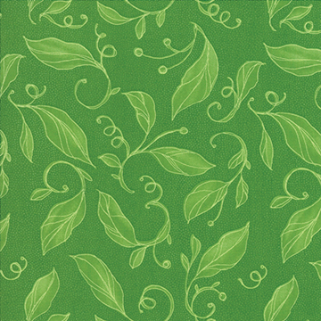 643-19 lily sapling
